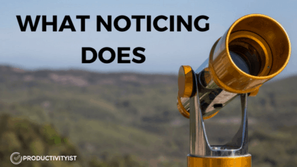 What Noticing Does
